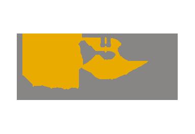 Ados Basarte